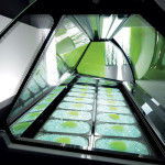 progettazione-gelateria-alba-002